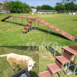 犬隻訓練設備工程